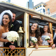 Wedding Trolley Bus